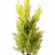 cypres-artificiel-mini-juniperus-1
