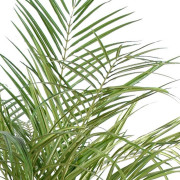areca-artificiel-palm-3-troncs-3