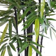 bambou-black-natural-nc-3