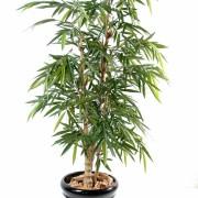 bambou-bouddha-tree-1