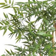 bambou-japanese-plast-7