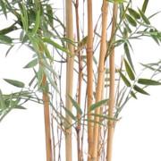 bambou-japanese-plast-8