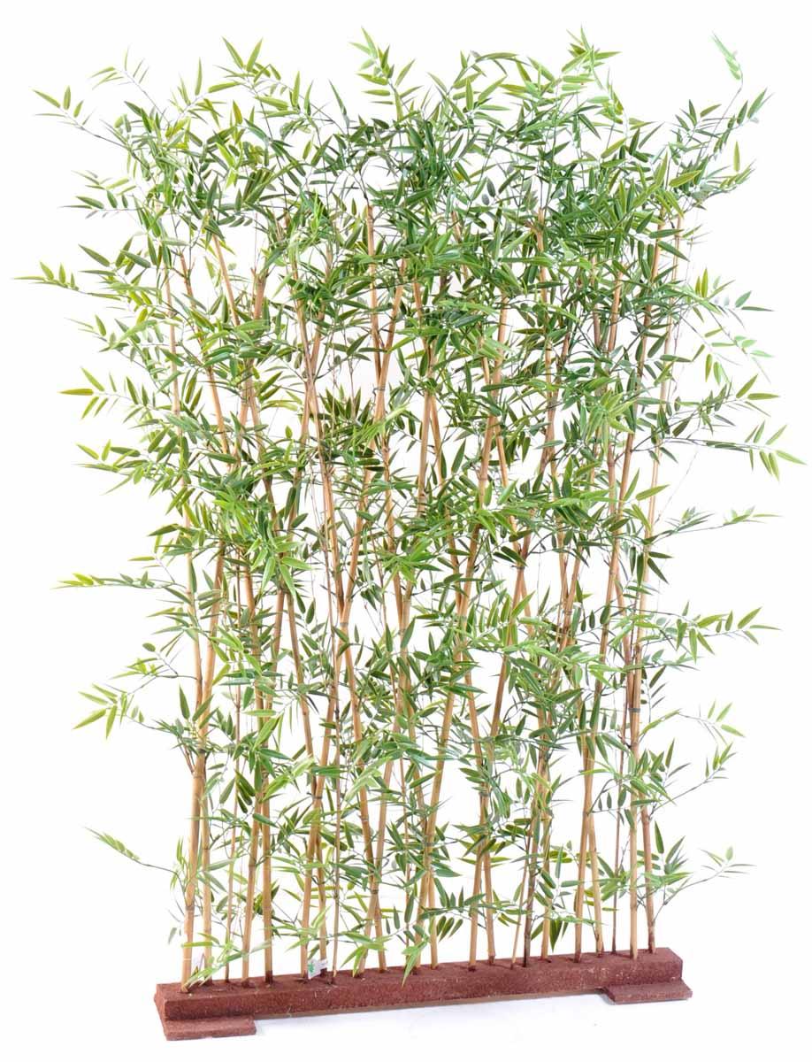 bambou-japanese-plast-haie-1