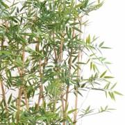 bambou-japanese-plast-haie-3