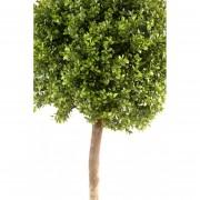 buis-artificiel-10252-71-2-plante-artificielle