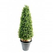 buis-artificiel-10281-71-1-plante-artificielle