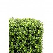 buis-artificiel-10294-71-plante-artificielle
