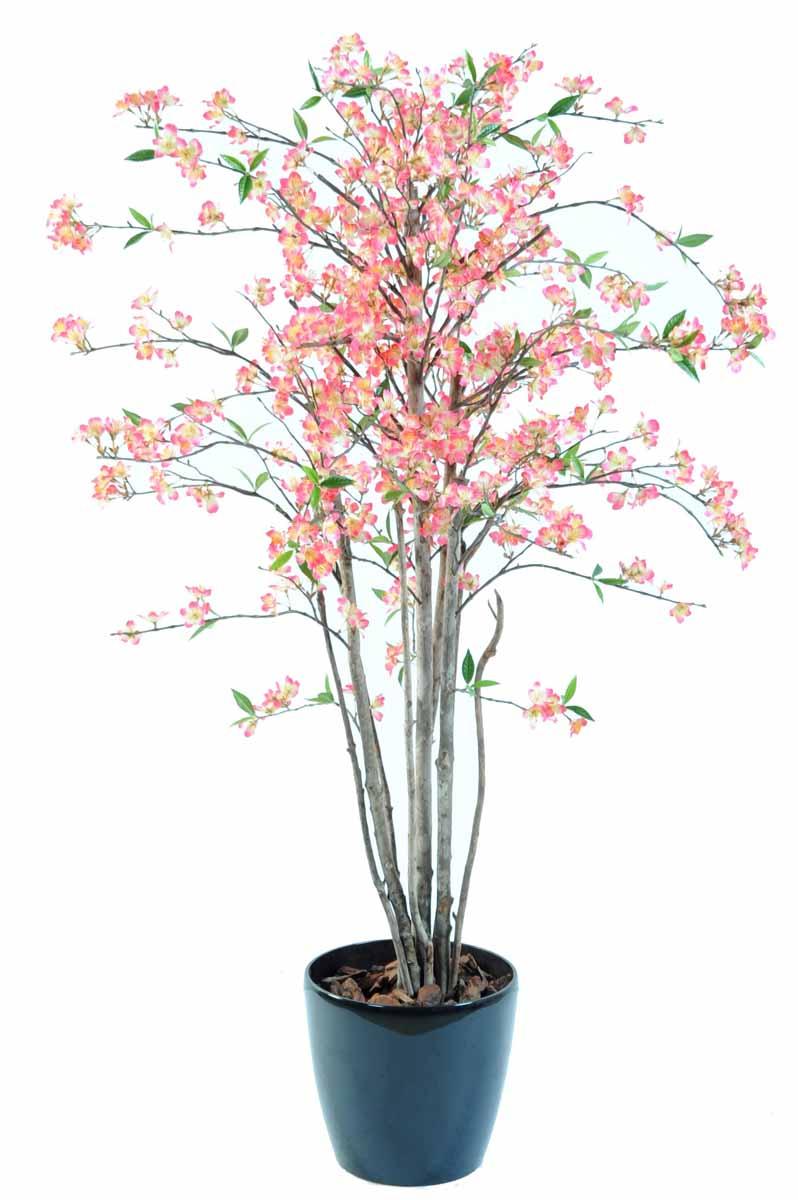 cerisier-fleur-new-1m60-1