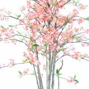 cerisier-fleur-new-1m60-3