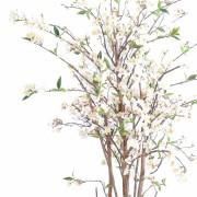cerisier-fleur-new-1m60-5