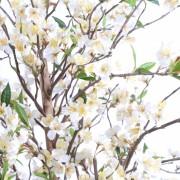 cerisier-fleur-new-1m60-6