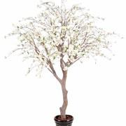 cerisier-fleur-new-2m80-1-
