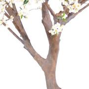 cerisier-fleur-new-2m80-3-
