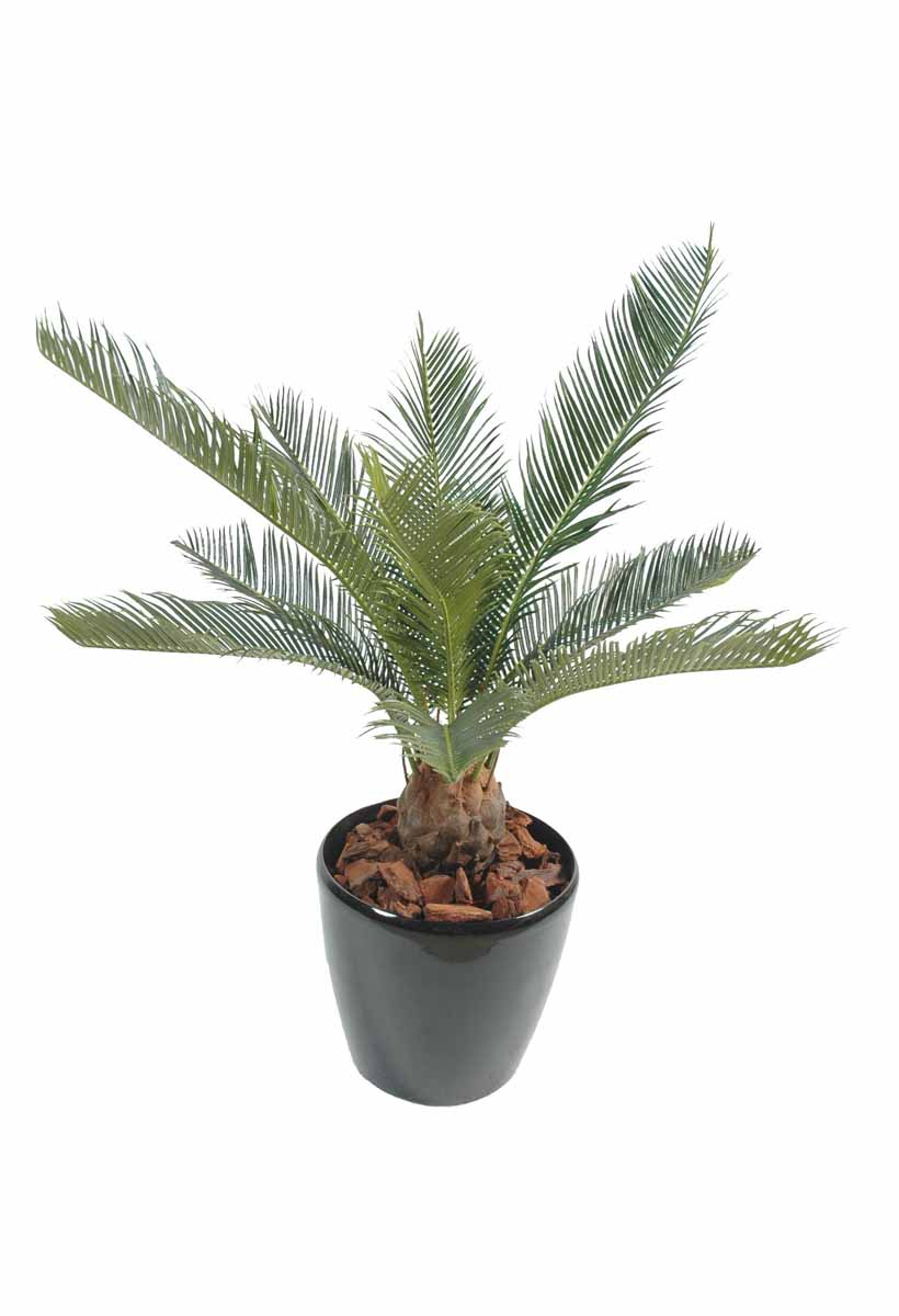 cycas-artificiel-baby-1