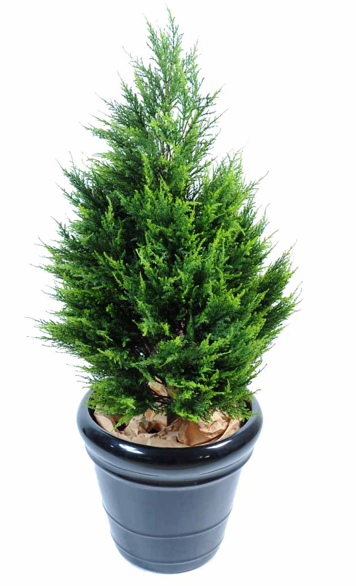 cypres-artificiel-juniperus-3