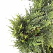 cypres-artificiel-juniperus-spirale-fine-2