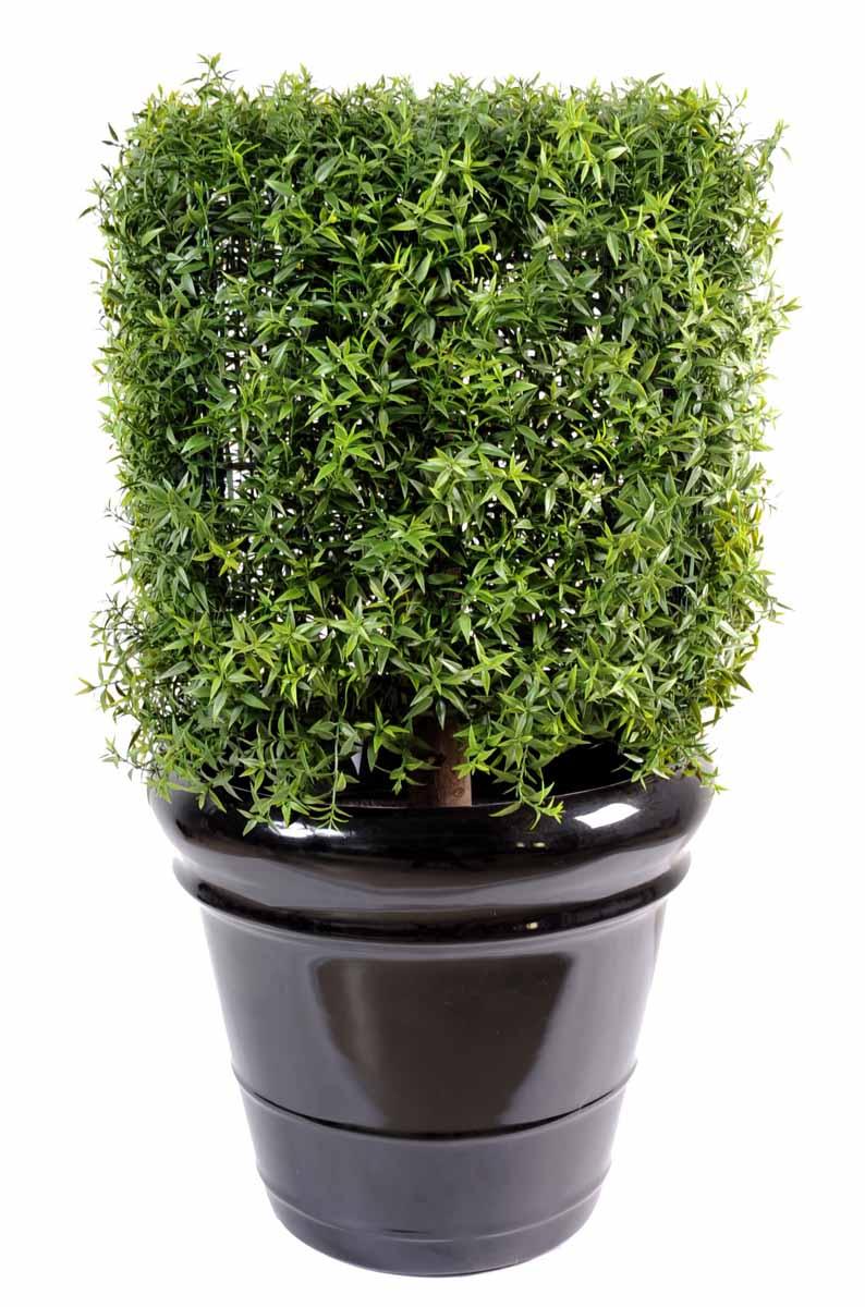 eucalyptus-artficiel-plast-carre-1