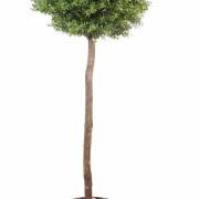 eucalyptus-artificiel-plast-tige-1