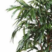 ficus-artificiel-alii-royal-3