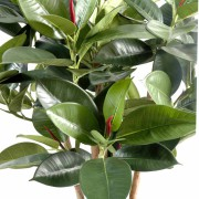 ficus-artificiel-elastica-buisson-3