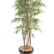 ficus-artificiel-multitree-natasja-panache-1