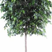ficus-artificiel-natasja-tree-2