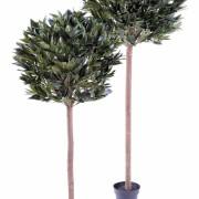 laurier-artifciel-boule-eco-3