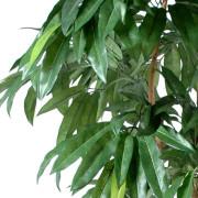 manguier-artificiel-2