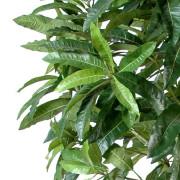 manguier-rtificiel-arbre-3