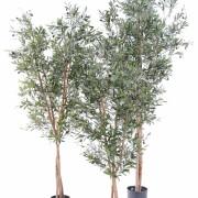 olivier-artificiel-new-large-3