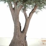 olivier-artificiel-new-tree-7