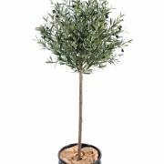 olivier-artificiel-tige-1