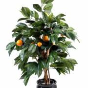 oranger-1