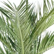 palmier-artifciel-bouteille-2