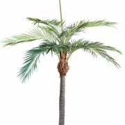 palmier-artificiel-1