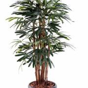 palmier-artificiel-raphis-lady-1