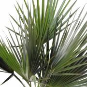 palmier-artificiel-washingtonia-2