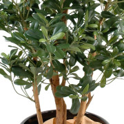 pittosporum-artificiel-5