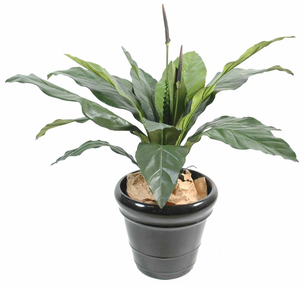 plante artificielle-anthurium-jungle-king-1