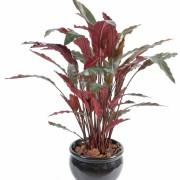 plante-artificielle-calathea-1