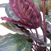 plante-artificielle-calathea-roseopicta-rouge-vert-2