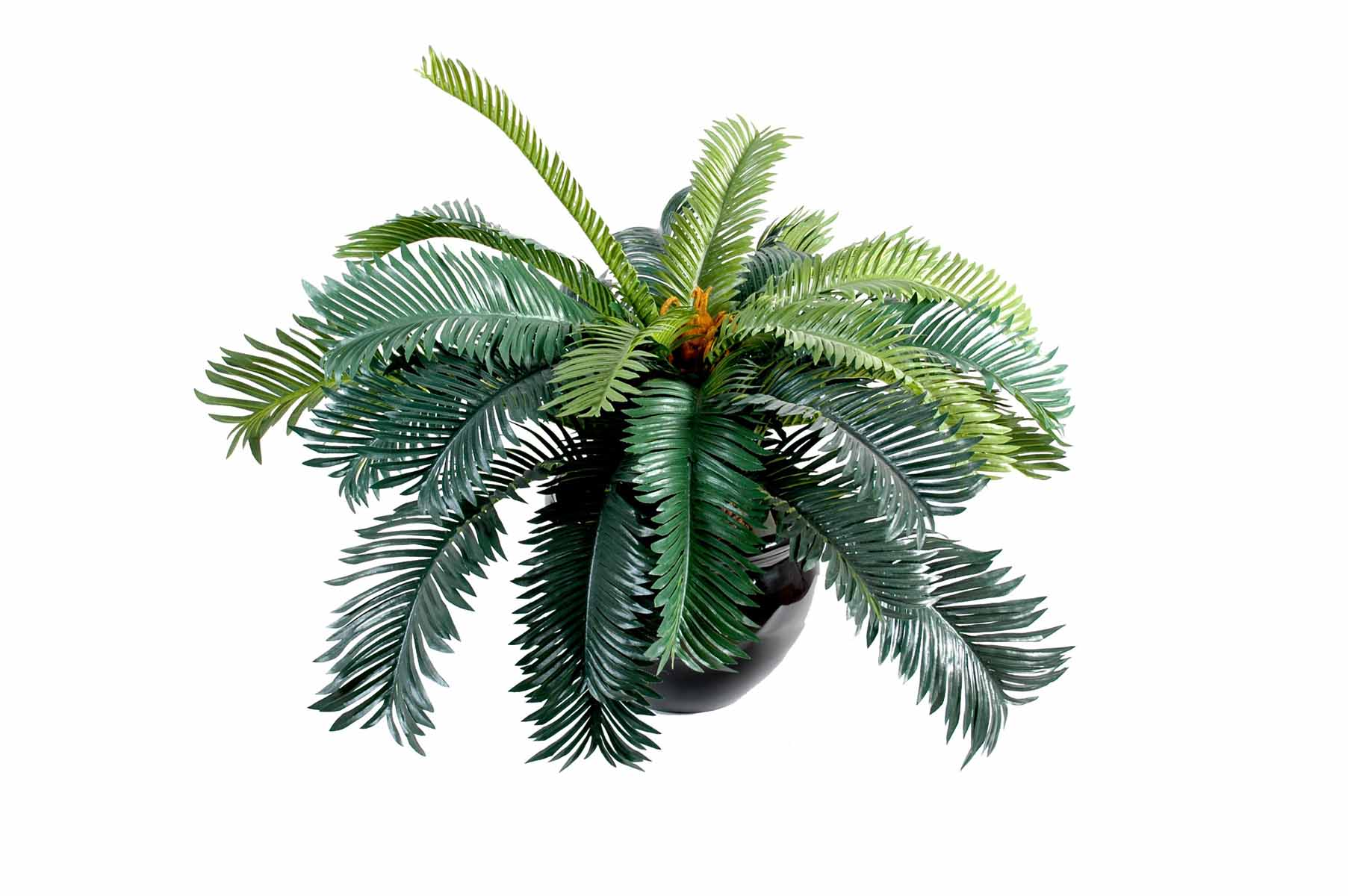 plante-artificielle-cycas-1