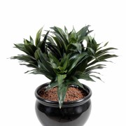 plante-artificielle-dracena-fragans-1