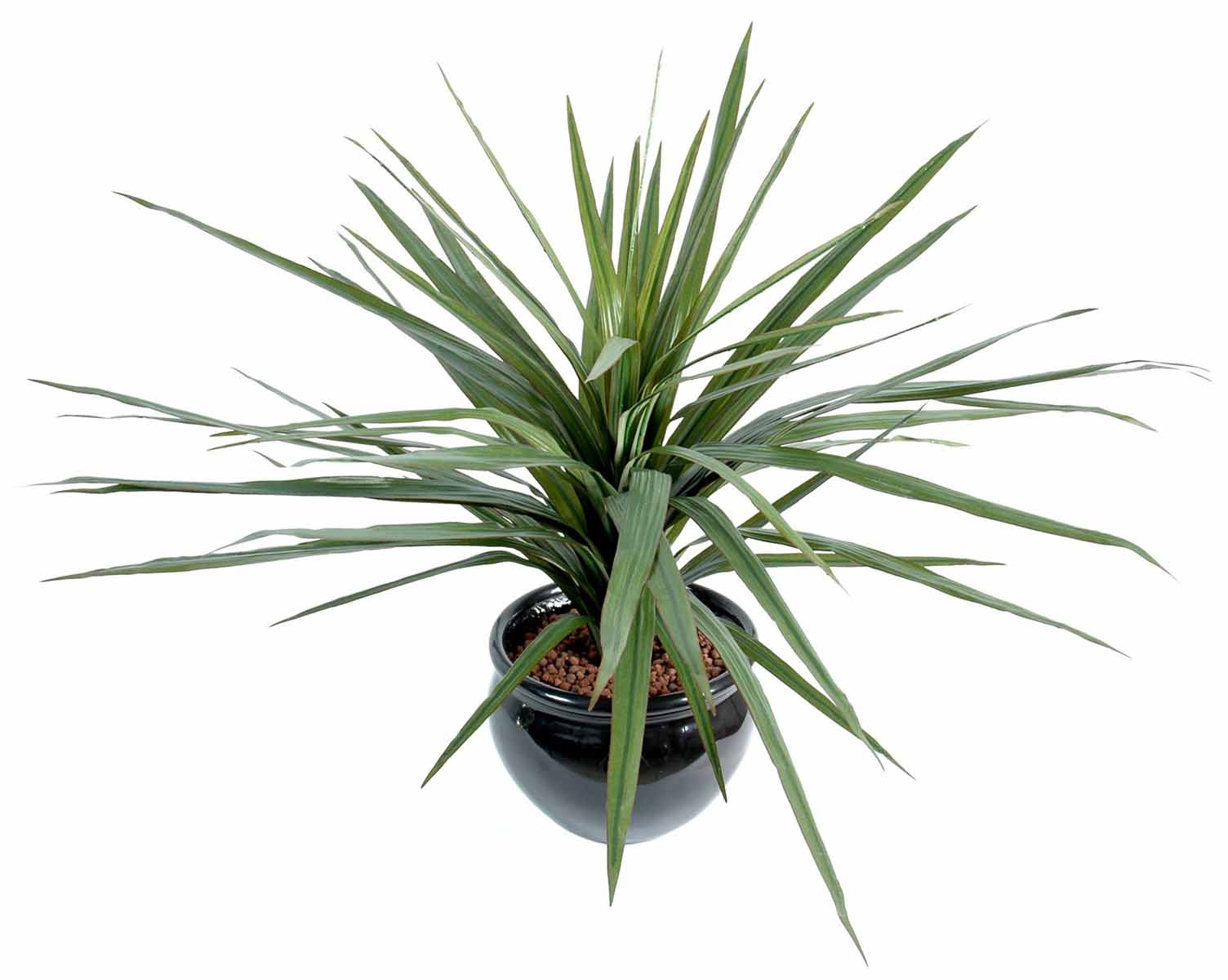 plante-artificielle-dracena-marginata-1