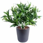 plante-artificielle-dracena-vine-1