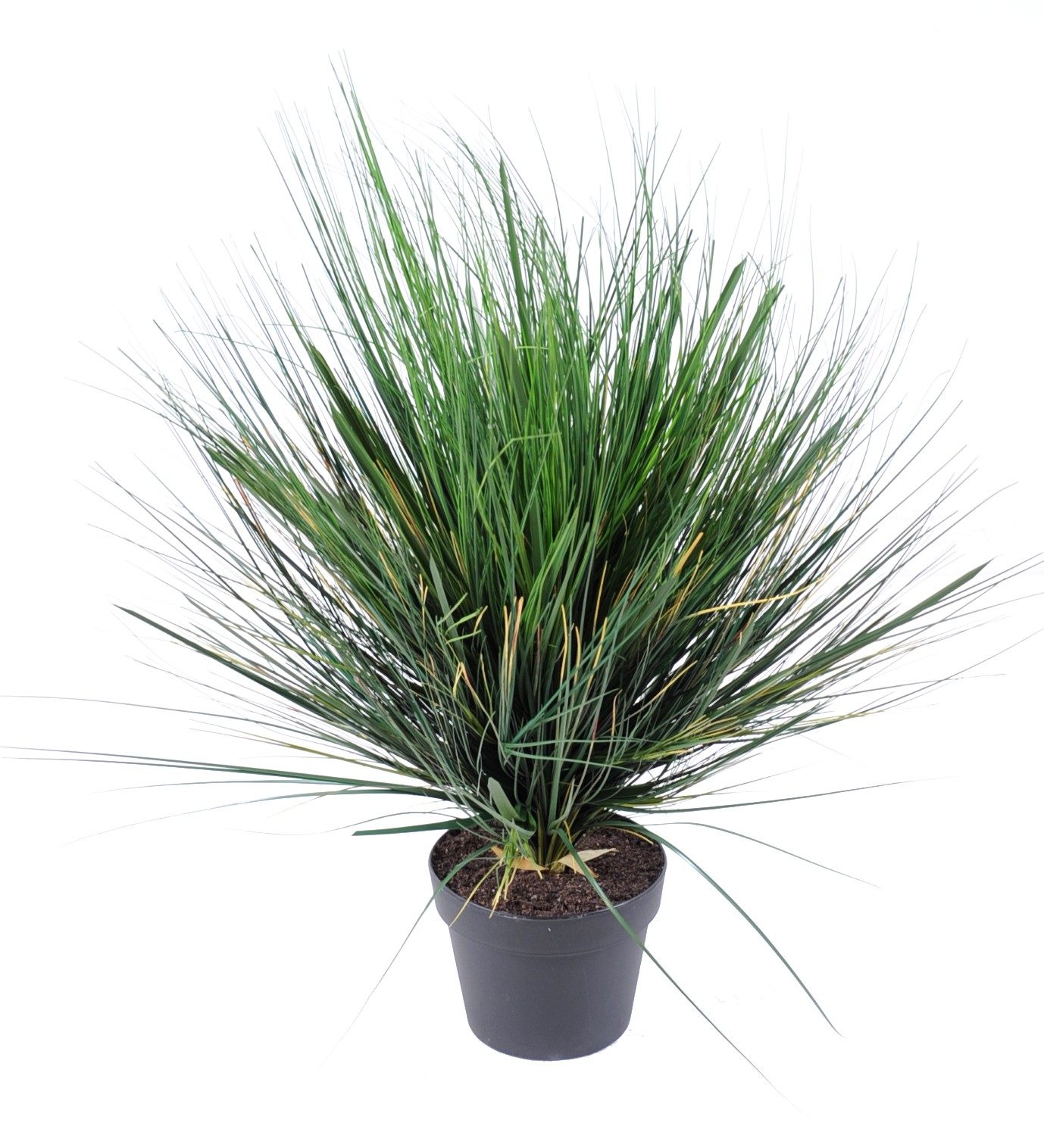 plante artificielle-onion-grass-round-1