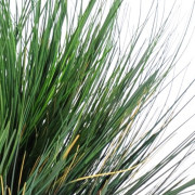 plante artificielle-onion-grass-round-3