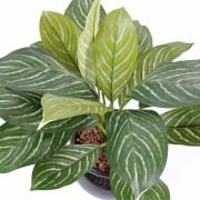 plante-artificielle-xanthosoma-2
