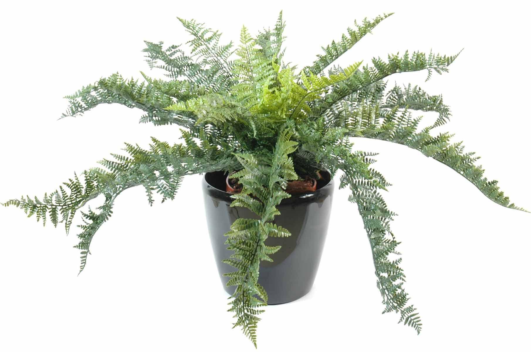 plantes-artificielle-fougere-plast-1