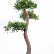 podocarpus-artificiel-bonsai-1